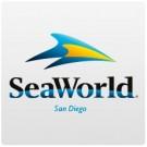 SeaWorld San Diego (3 anos ou +) - 7 dias de visitas ilimitadas